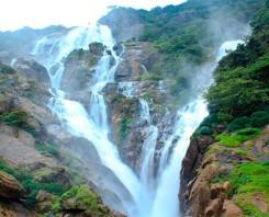 Full Day Trip To Dudhsagar Falls