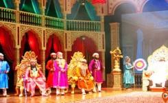 Experience The Taj Show