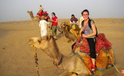 Half Day Camel Safari