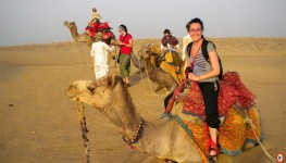 Half Day Camel Safari