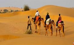 Jaisalmer City Tour With Camel Safari