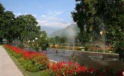 5 Nights Best Of Kashmir With Gulmarg Pahalgam