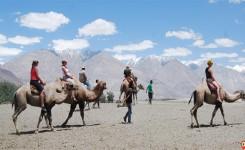 7 Days Best Of Ladakh Tour