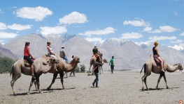 7 Days Best Of Ladakh Tour