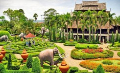 Nong Nooch Village With Lunch