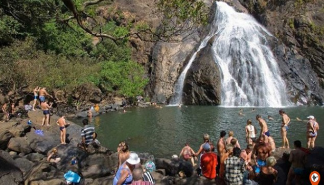 Dudhsagar Falls With Lunch
