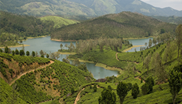 Yelagiri Hills tour from Bangalore