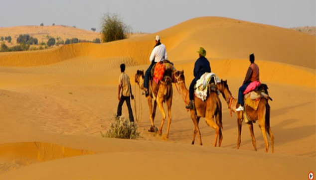 Jaisalmer City Tour With Camel Safari
