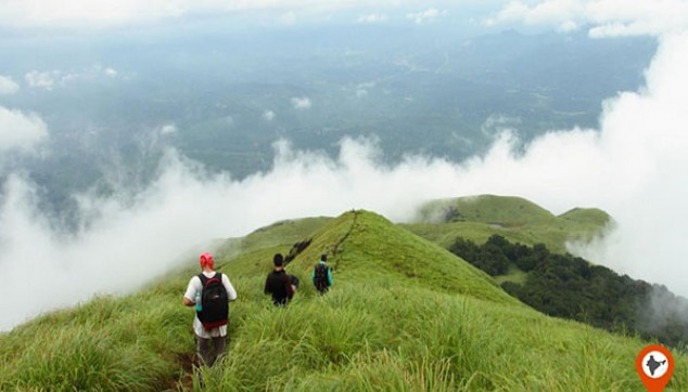 Wayanad Tour From Cochin
